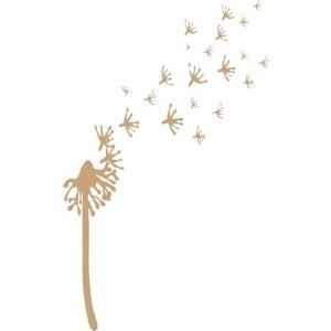 DES Daughter Network blog image of dandelion seeds