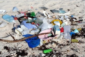Toxic Soup: Plastics Could Be Leaching Chemicals Into Ocean