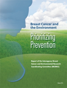 Breast Cancer and the Environment: Prioritizing Prevention Report of the Interagency Breast Cancer and Environmental Research Coordinating Committee