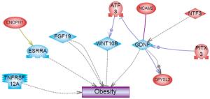 Plastics Derived Endocrine Disruptors (BPA, DEHP and DBP) Induce Epigenetic Transgenerational Inheritance of Obesity, Reproductive Disease and Sperm Epimutations
