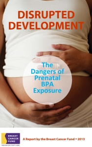 Disrupted Development: The Dangers of Prenatal BPA Exposure