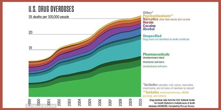U.S. Drug Overdoses 1999-2010Chart