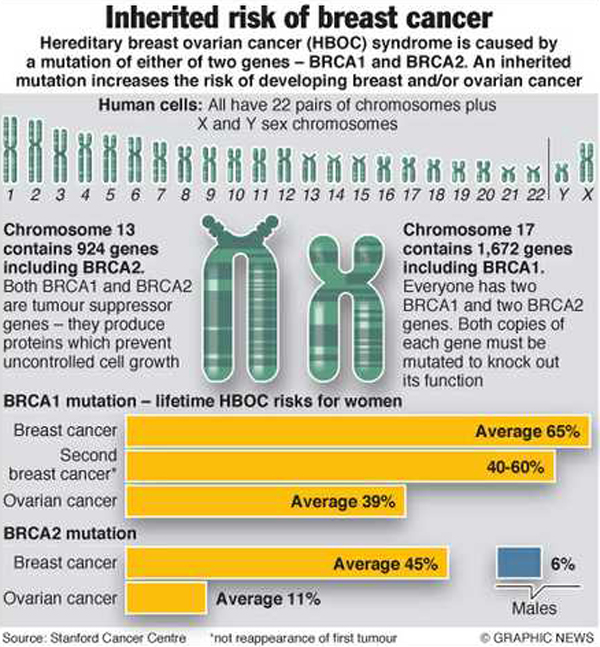 The Inherited Risk of Breast and Ovarian Cancer infographic
