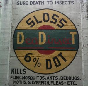 DDT ad image