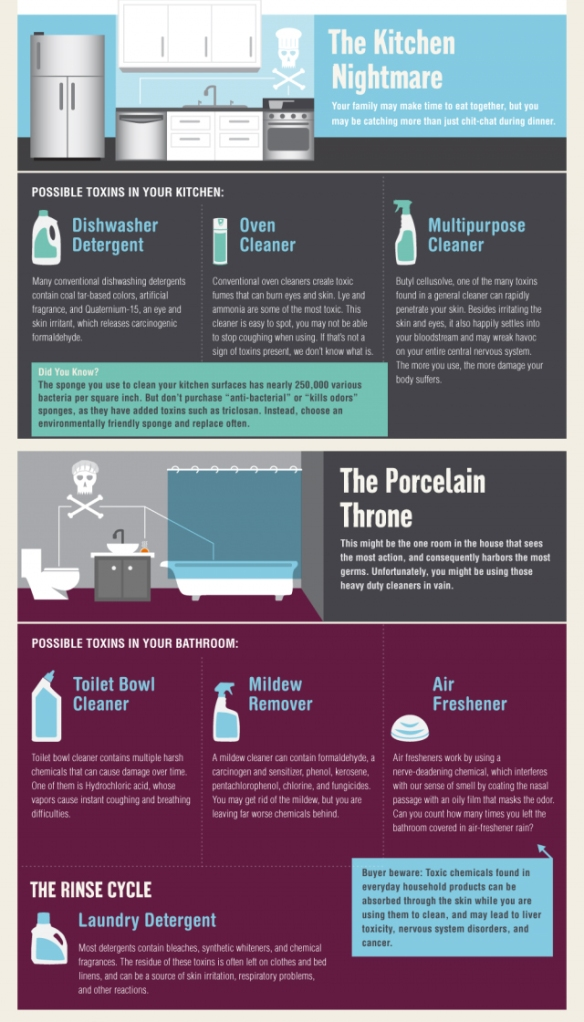 Is Your House Toxic? infographic | DES Daughter Network