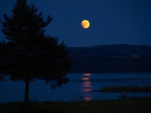 The Full Frosty Beaver's Moon image