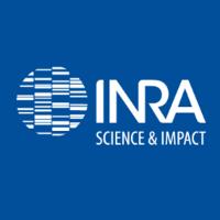 Inra_International logo image