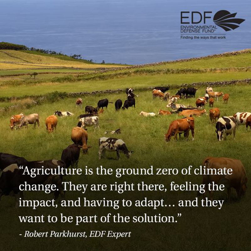 Save the Climate, pay a Farmer image