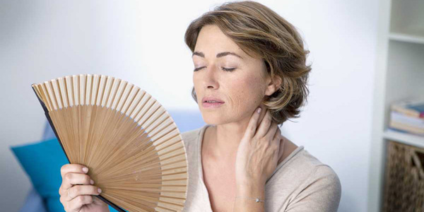 menopause Hot Flashes image