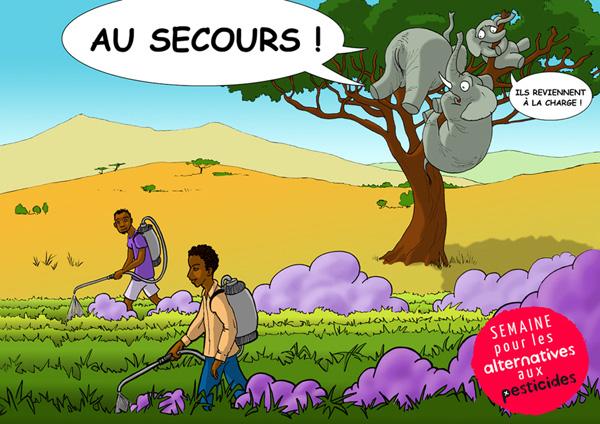 Alternative-aux-Pesticides en Afrique image