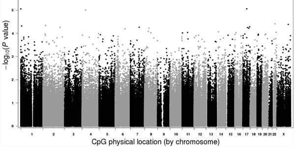 Epigenome-wide-study