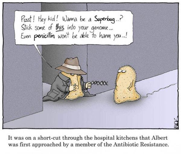 antibiotic-resistance-comic