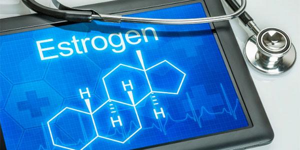 estrogen molecular image