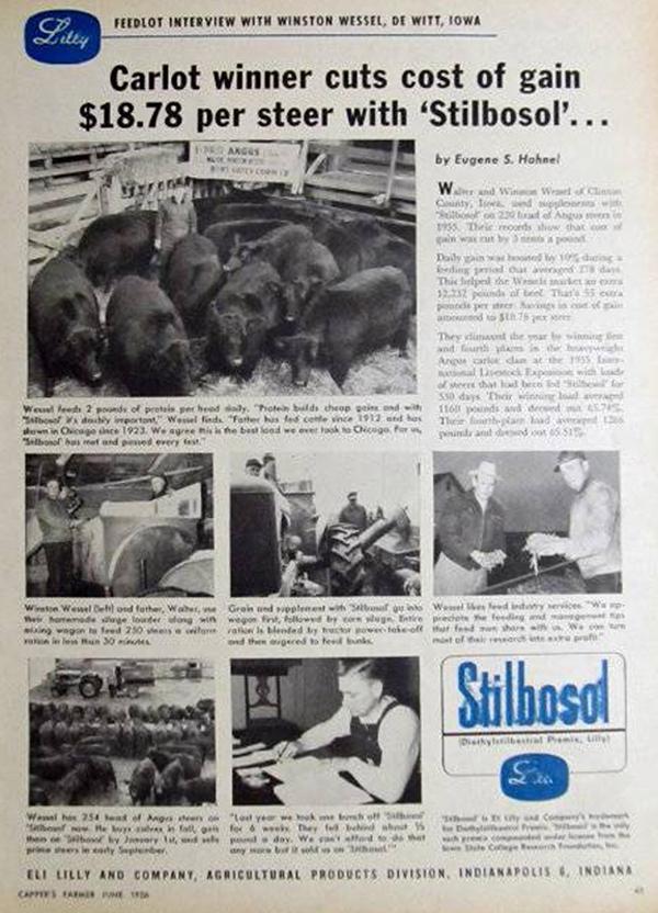 DES-Stilbosol-1956-advert image