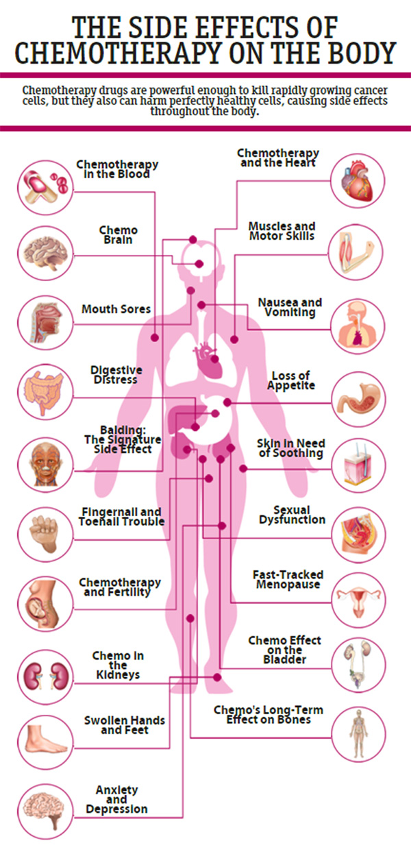 The Side Effects Of Chemotherapy On The Body Des