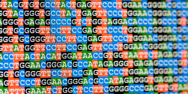 dna-sequence image
