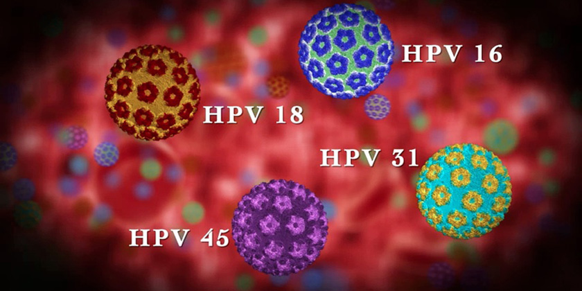 image of hpv virus