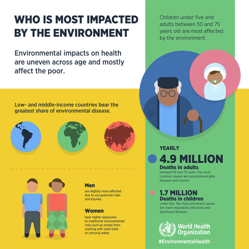 Preventing disease through healthy environments infographic