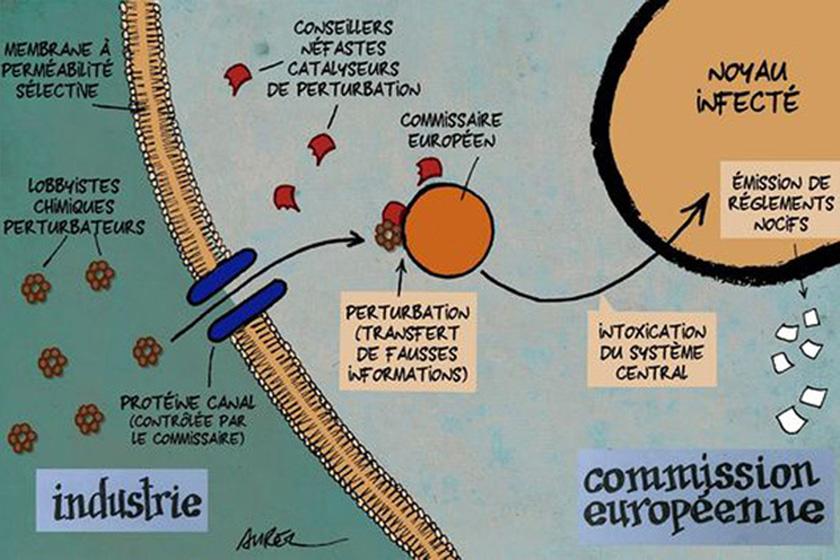 Les perturbateurs endocriniens et la CommissionEuropéenne