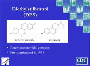DES Update CDC 2003 Presentation for Clinicians andNurses