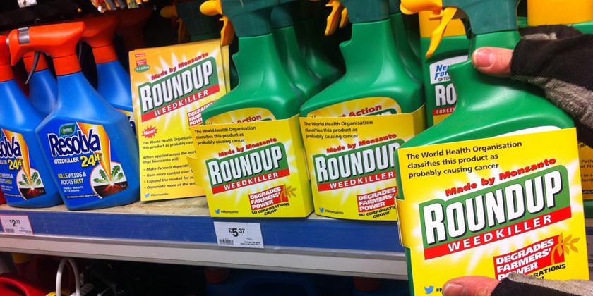 Pesticide glyphosate disrupts uterinedevelopment