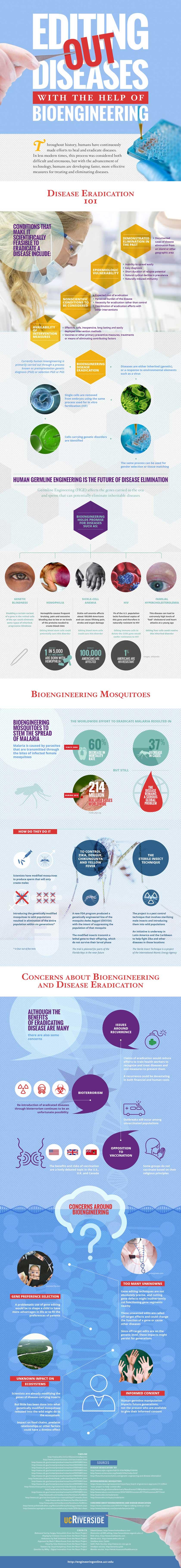 Bioengineering Infographic