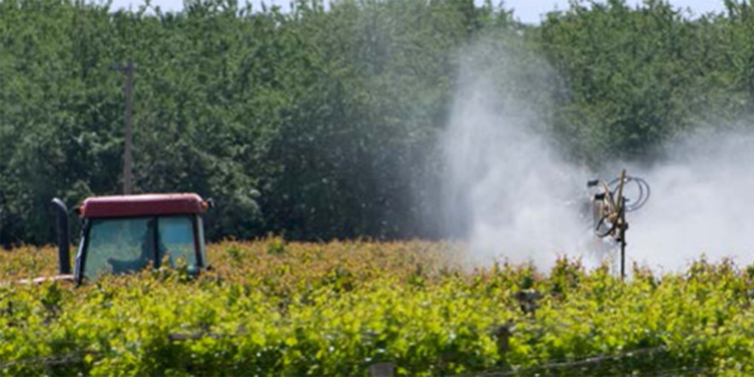 Expositions professionnelles aux pesticides : mieux connaître les risques et réduire lesexpositions