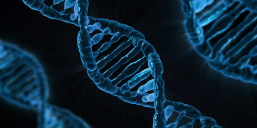 High genetic correlations found between six psychiatric disorders