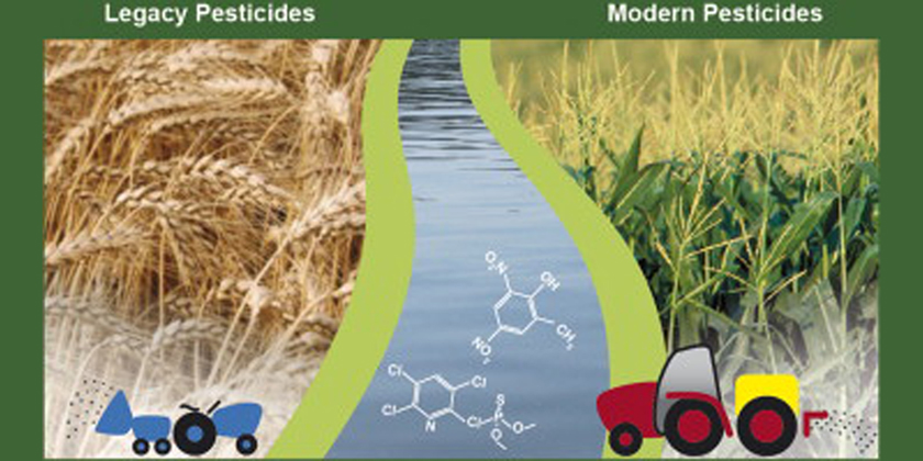 Banned pesticides continue to affect toxicity in streams
