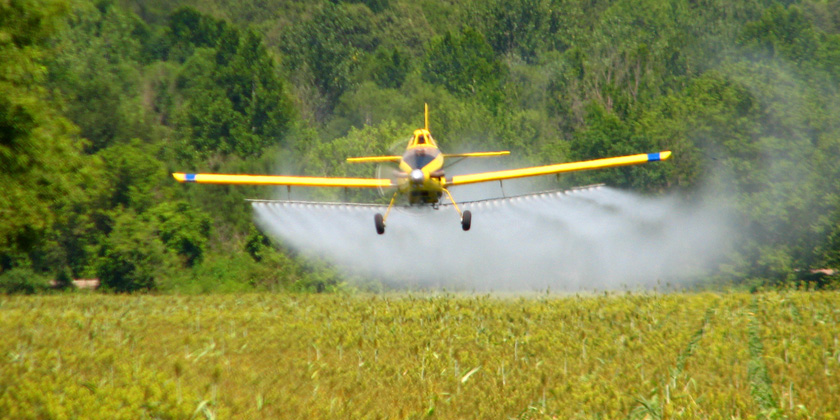 Association between Cancer and Environmental Exposure to Glyphosate