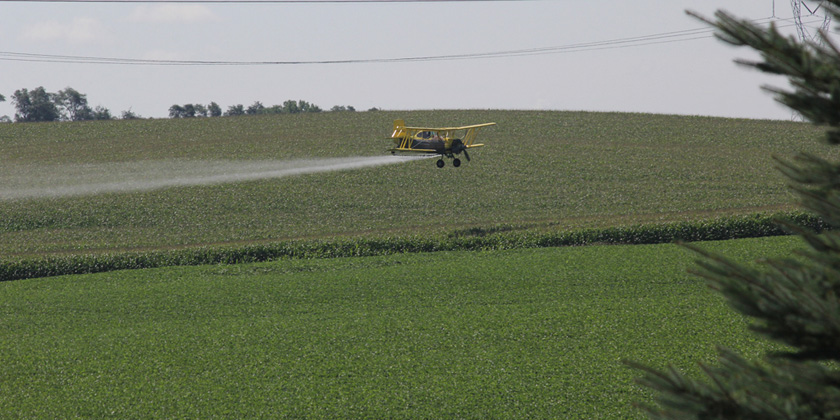 High doses of pesticides can potentially impact DNA, triggering cancers later in life
