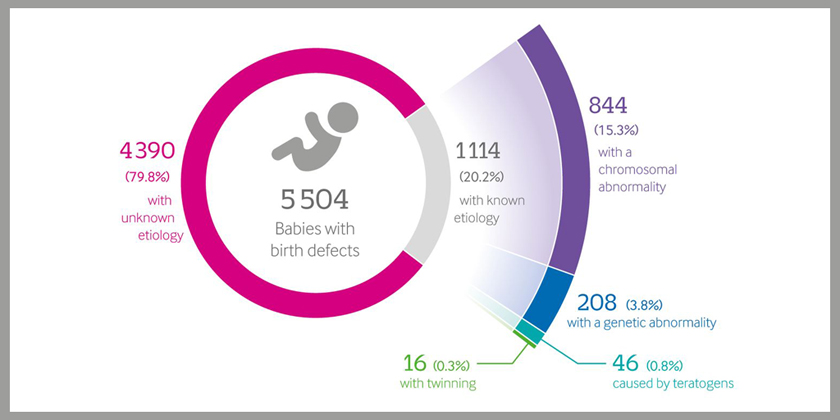 The cause of birth defects is known in less than a quarter of cases