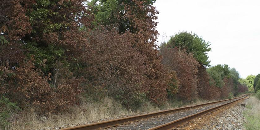 image d'épandage désherbants entretien voies ferrées