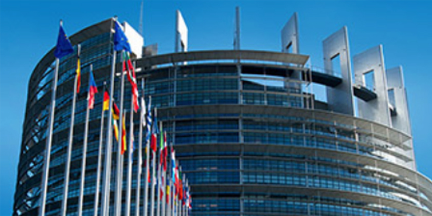 EU Parliament MEPs reject endocrine disrupters proposal