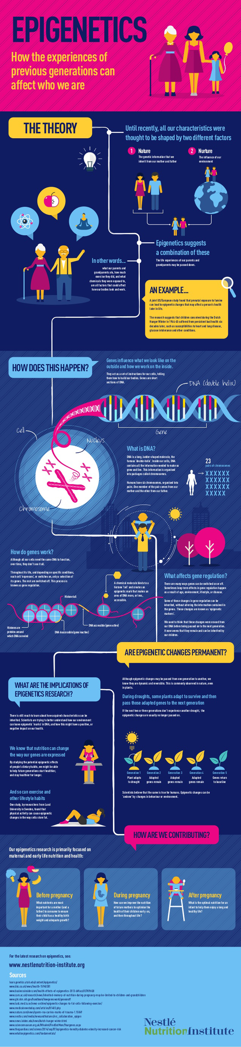 Epigenetics Infographic