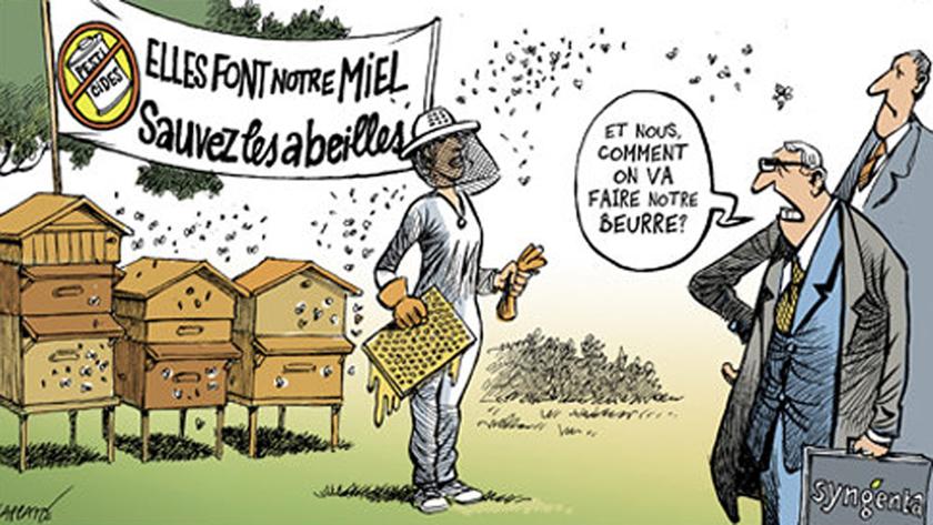Protégeons la pollinisation!