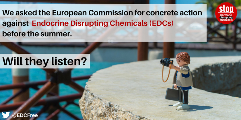 EU Obligation to Protect its People and the Environment from All Harm caused by Endocrine Disrupting Chemicals