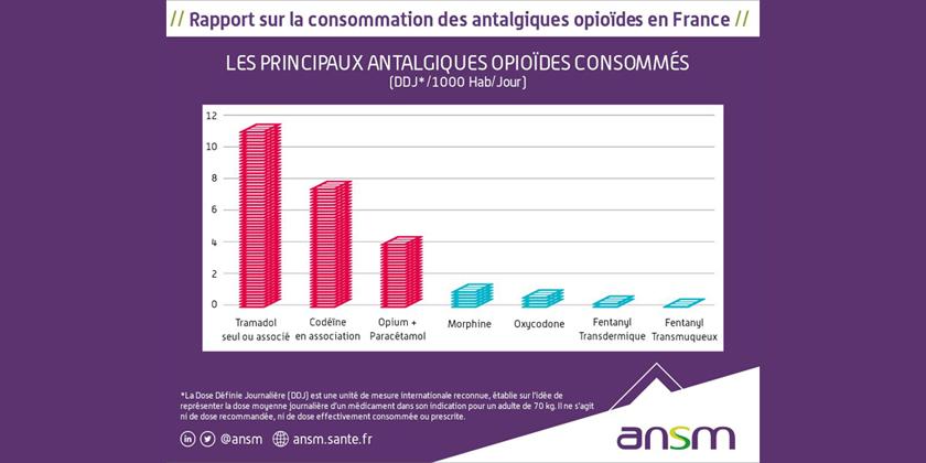 État des lieux de la consommation des antalgiques opioïdes et leurs usagesproblématiques