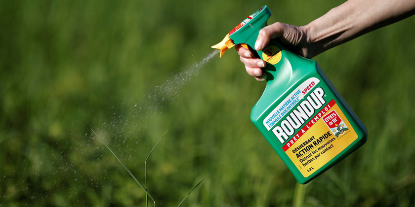 Glyphosate suspected to be an endocrine disruptor