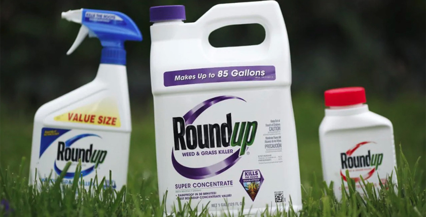Glyphosate-exposed shows a change in intestinal flora, study